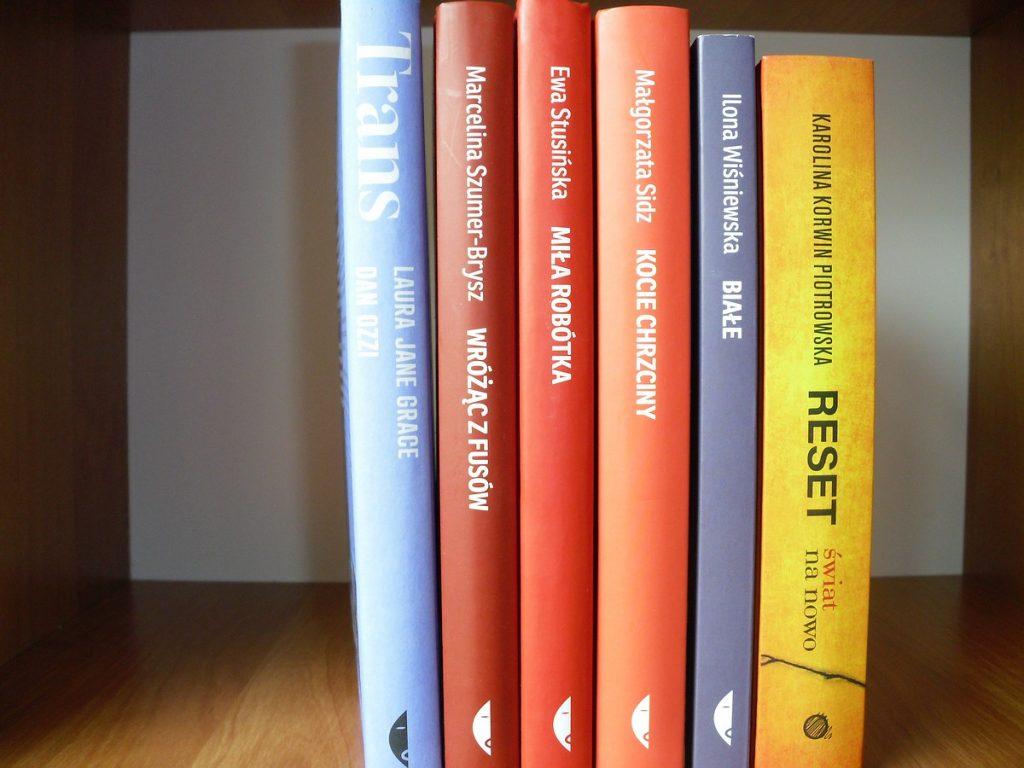 Na brązowej półce ustawiono 6 książek grzbietami do przodu.