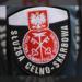 Słuzba celno-skarbowa - logo